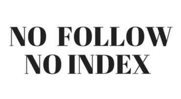 Cuándo usar No follow y No index
